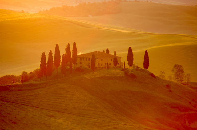 Early morning light in Tuscany.