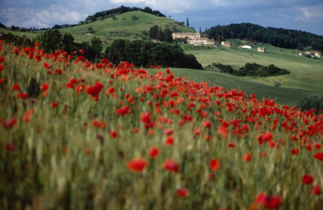 The beauty of the Umbrian countryside will astound you!