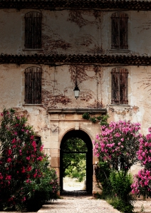 The incomparable colors of Provence.