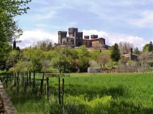 Villa del Castello has an amazing view of the castle!