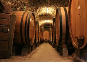 Enjoy tastings, a vineyard tour, and a cellar visit.