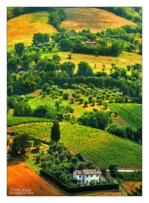 The rolling Chianti countryside is a feast for the senses! Explore it with an expert guide.