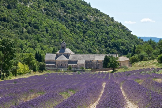 Provence_AndyLawson